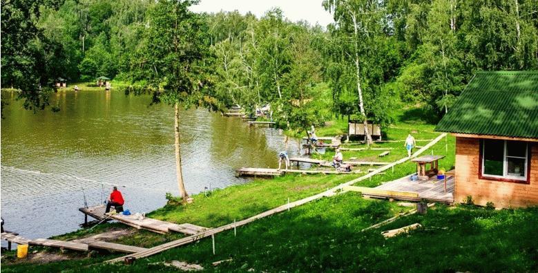 Зеленый массив Богдановского лесничества рядом с ЖК «Пригород Лесное»