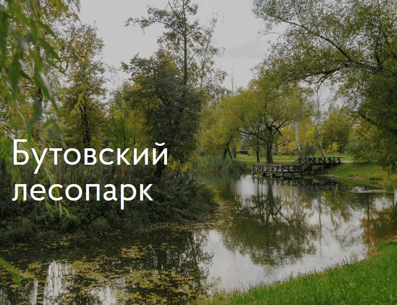 Бутовский лесопарк возле ЖК «Столичные поляны»
