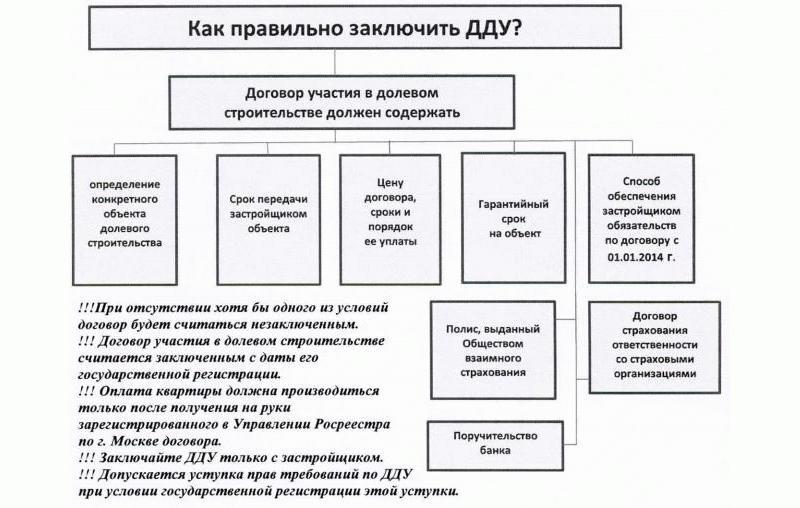 Этапы заключения договора ДДУ