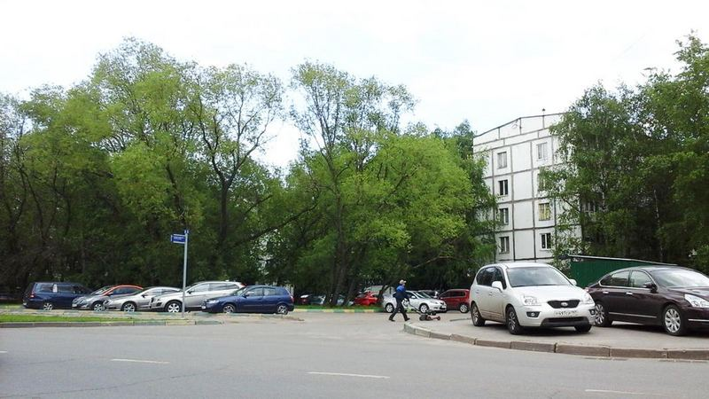 Вид Гольяново сегодня