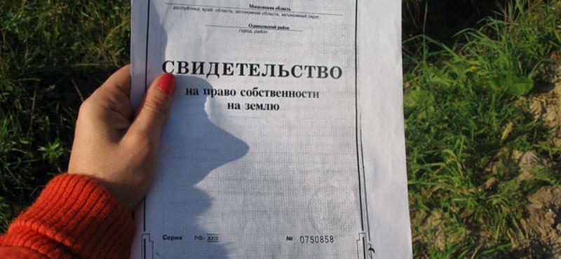Основной документ