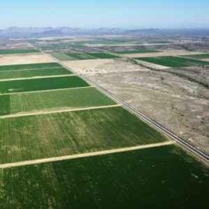 Как получить от государства земельный участок в собственность