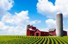 Как узнать разрешённое использование земельного участка по кадастровому номеру