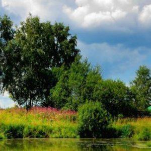 Пожизненное наследуемое владение земельным участком в рамках Земельного кодекса