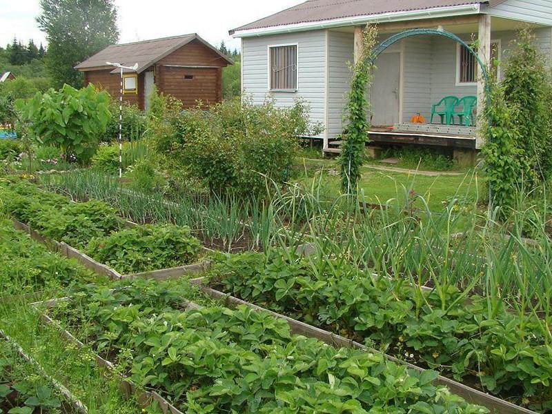 Дачные и садовые участки