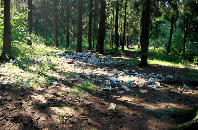 Изображение - Рейтинг экологически чистых районов москвы blobid1536982809370